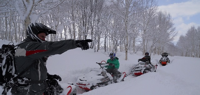 Niseko Backcountry Sleds