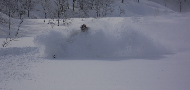 Niseko Powder Capital